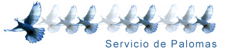palomas  Our Services palomas