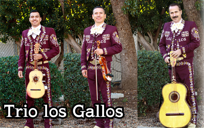 trio_gallos  Our Services trio gallos1